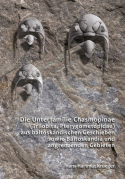 Chasmopinae Baltoskandiax